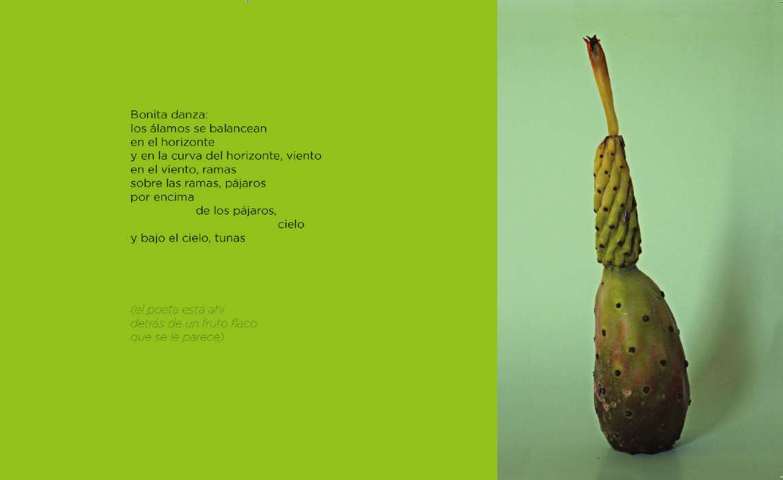 1 botánica poética